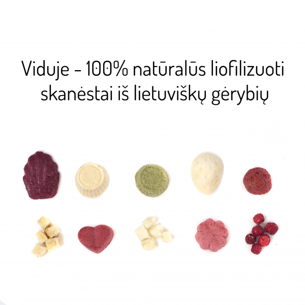 Bruzdukų advento kalendorius - 10 skirtingų liofilizuotų skanėstų